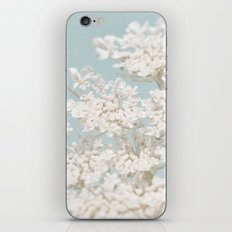 Pale Aqua: Dreaming of Spring iPhone & iPod Skin
