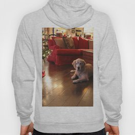 Golden Retriever Ready to Open Gifts Hoody