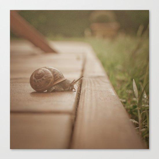 Snail Garden 2 Canvas Print