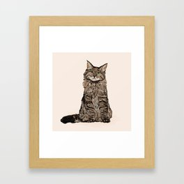 Maine Coon sitting cat portrait cute cat lady gift idea for cat owner cat lover animal pet friendly  Framed Art Print
