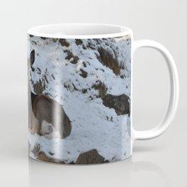 East Oregon Mule Deer Coffee Mug