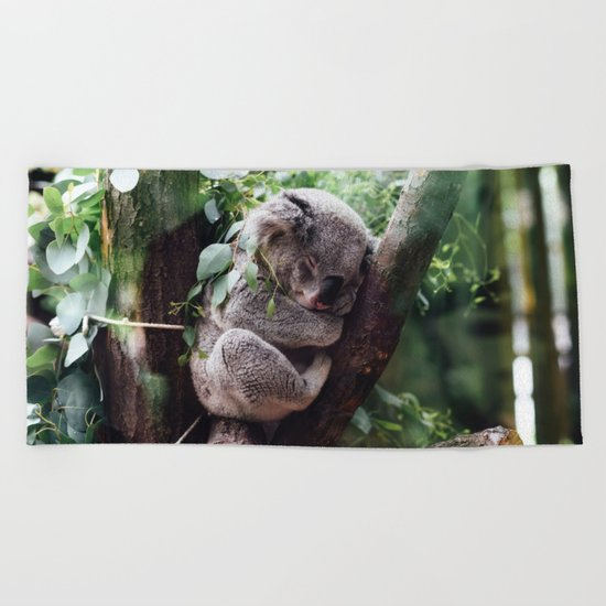 Cute Koala relaxing in a Tree Beach Towel