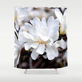 Magnolia 5 Shower Curtain