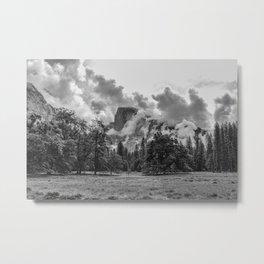 Half Dome Meadow Metal Print