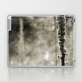Autumn Sepia Laptop & iPad Skin