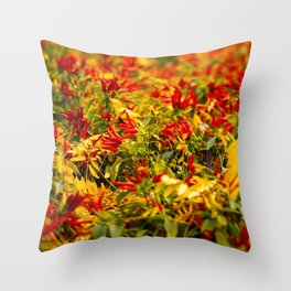 Caliente! Throw Pillow