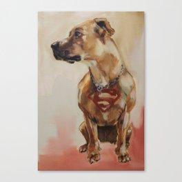 Superdog Canvas Print