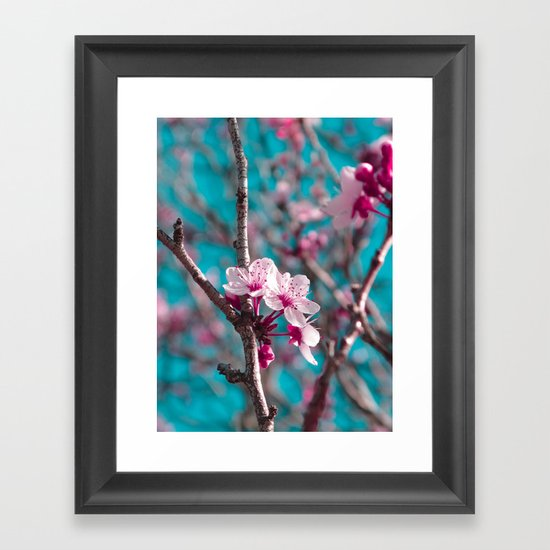 Pink Blossoms Framed Art Print