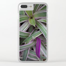 Peeking Out Clear iPhone Case