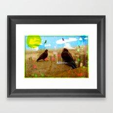 New York Pigeons Framed Art Print
