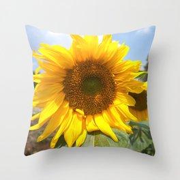 sunflower photography Throw Pillow