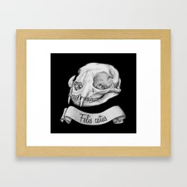 Cat skull in ink Framed Art Print
