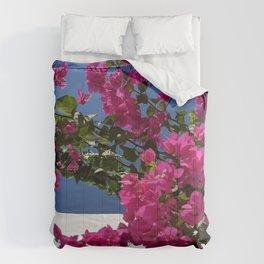 Bougainvillea With Colour Blocking Comforters