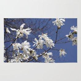 Star filled sky (Star Magnolia flowers!)      Edit Rug