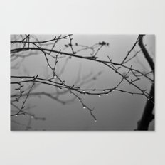A Whisper No. 04 Canvas Print