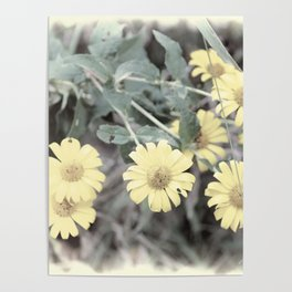 Yellow Pastel Wildflowers II Poster