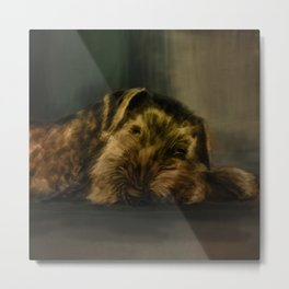 Airedale Terrier Mixed Media Metal Print