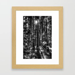 Enchanted Forest Framed Art Print