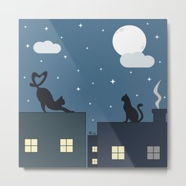 cute cats on the roof in the starry night Metal Print