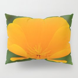 California Poppy close up by Teresa Thompson Pillow Sham