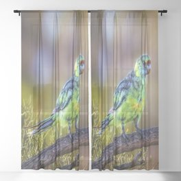 Mallee Ringneck Parrot Sheer Curtain