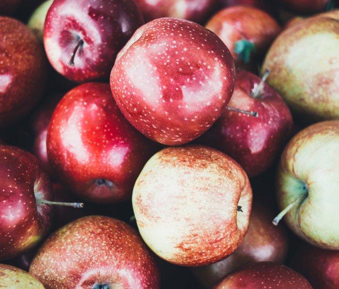 Red Apples Metal Travel Mug