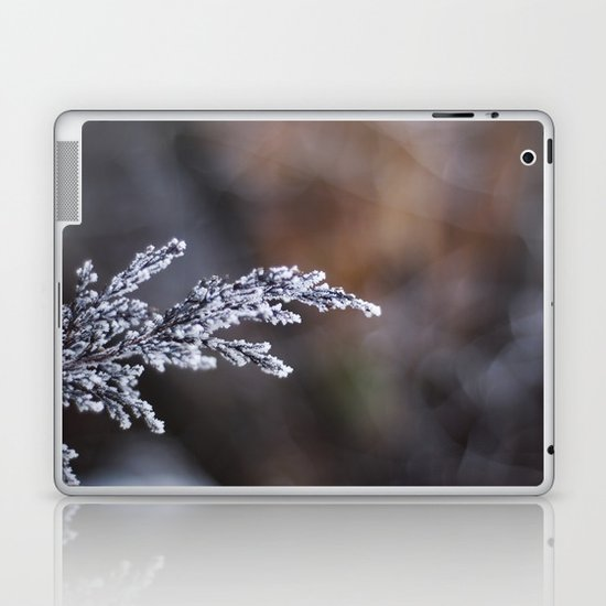 Frosted Juniper Laptop & iPad Skin