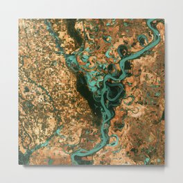 Views of life from space Metal Print