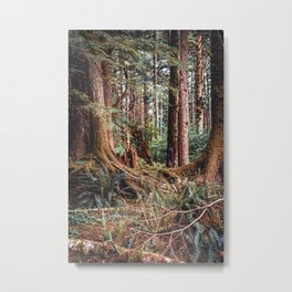 Forest in Oregon | Cannon Beach Magical Landscape Metal Print