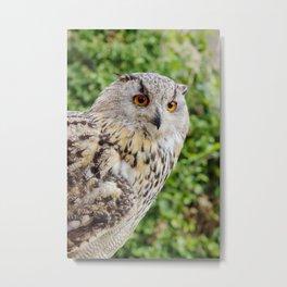 Eagle Owl with glowing eyes Metal Print