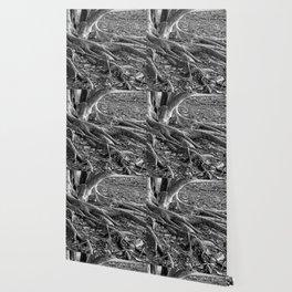 The Fingers-bw Wallpaper