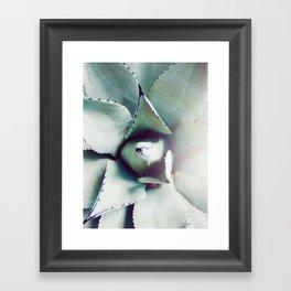 Succulent Love - Agave Green Gray Framed Art Print