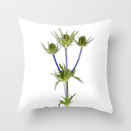 Thistle Cartoon Throw Pillow