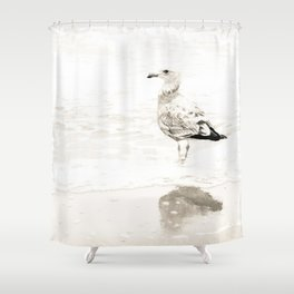 Reflections of California Gull Shower Curtain