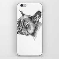 french bulldog iPhone & iPod Skins featuring French Bulldog by Squidoodle