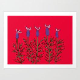 Lavender red Art Print