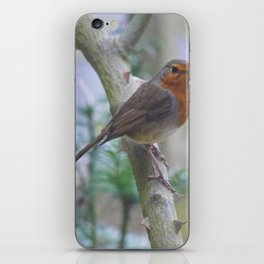 Redbreast iPhone Skin