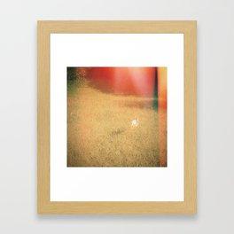 V I I I . V E L O  Framed Art Print
