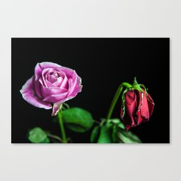 Love lost Canvas Print