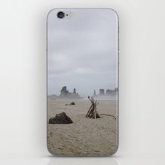 Bandon Beach Bird iPhone & iPod Skin