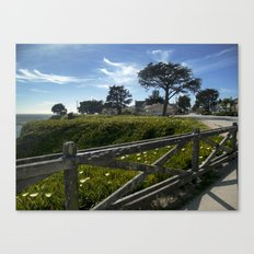 Blue-Green Canvas Print