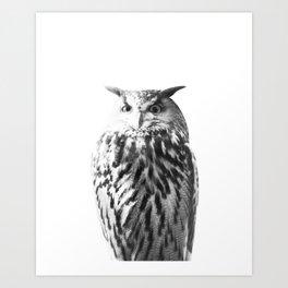 Owl on White #1 #animal #decor #art #society6 Art Print