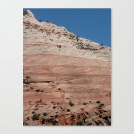 Zion Crossbedding Canvas Print