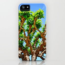 Gnarly Tree Of San Francisco iPhone Case