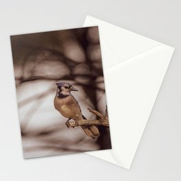 The Blue Jay Stationery Cards
