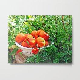 Garden Goodies Metal Print