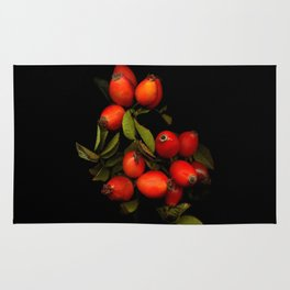 The branch with the fruits of wild rose on a black background Rug