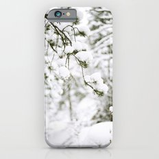 Snowy Branch iPhone 6 Slim Case