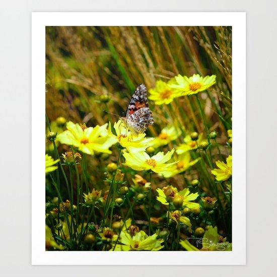 Brown Butterfly 2 Art Print