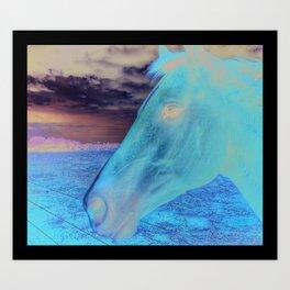 Just a horse Art Print